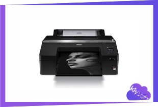 Epson SureColor P5000 Driver, Software, Manual, Download for Windows, Mac
