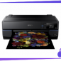 Epson SureColor P800 Driver, Software, Manual, Download for Windows, Mac